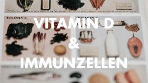 Vitamin D Immunzellen