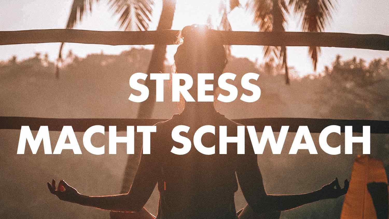 stress macht schwach